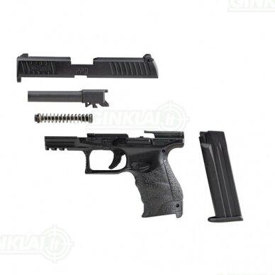 Modelis Walther PPQ, 1:2 dydžio 3