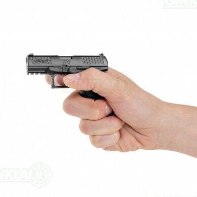 Modelis Walther PPQ, 1:2 dydžio 4